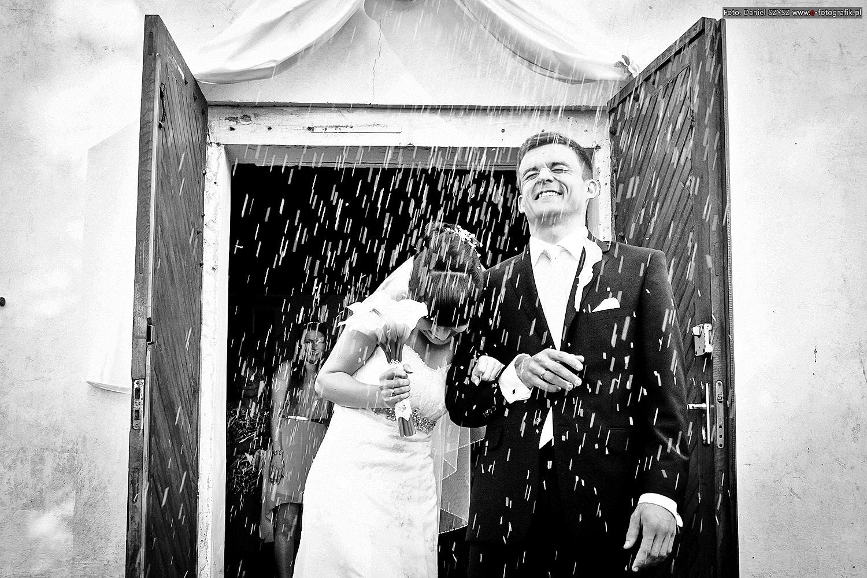 Zdjęcia ślubne oferta cennik
