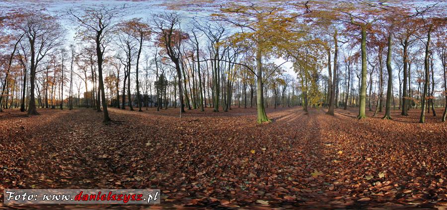 park-w-swinoujsciu-panorama-sferyczna
